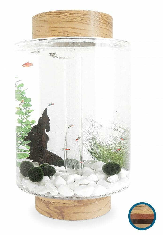 Buy a beautiful Norrom Aquarium fish tank