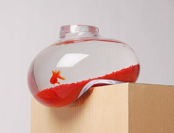 Psalt Bubble Aquarium