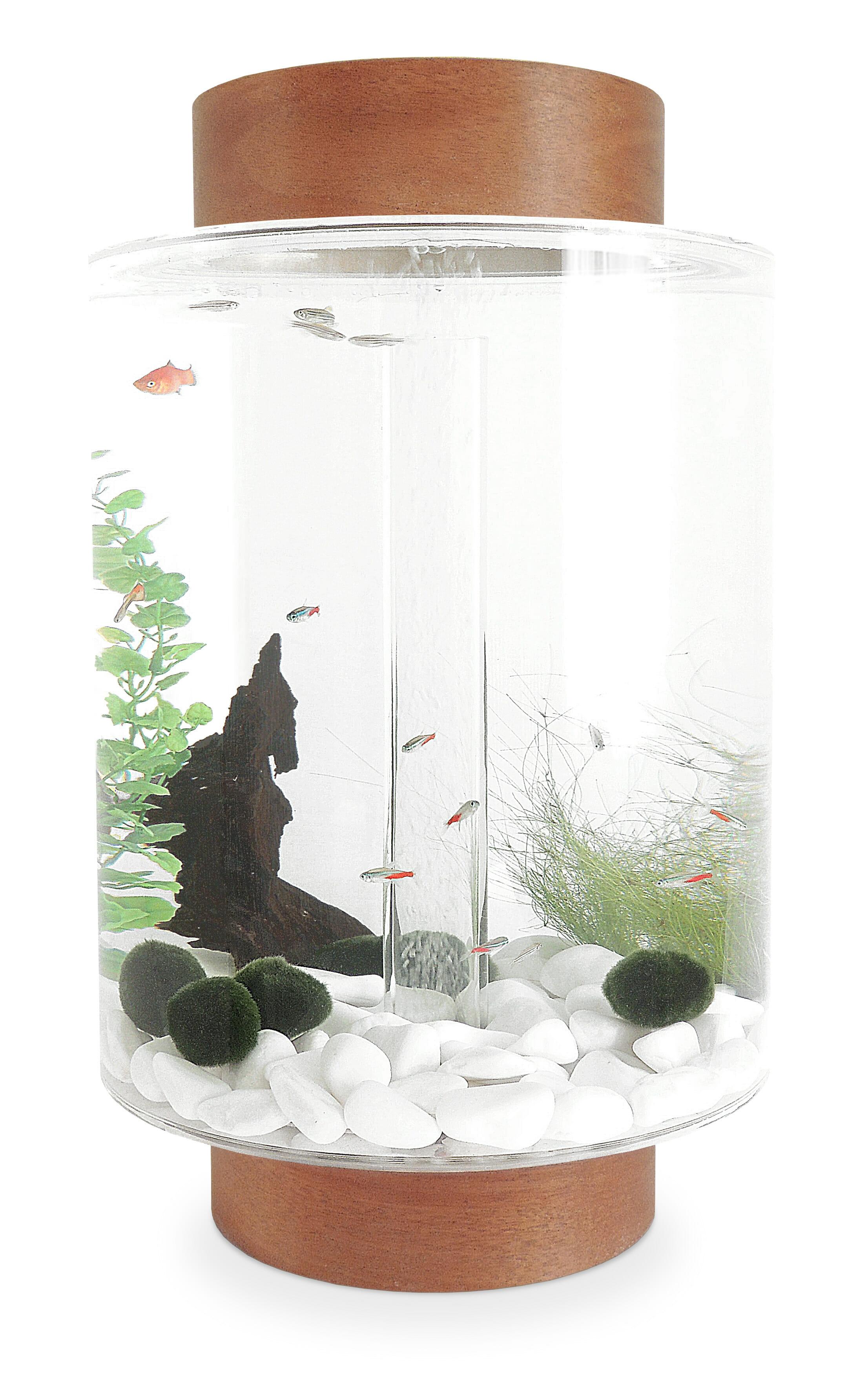 Light mahogany aquarium with natural white stones