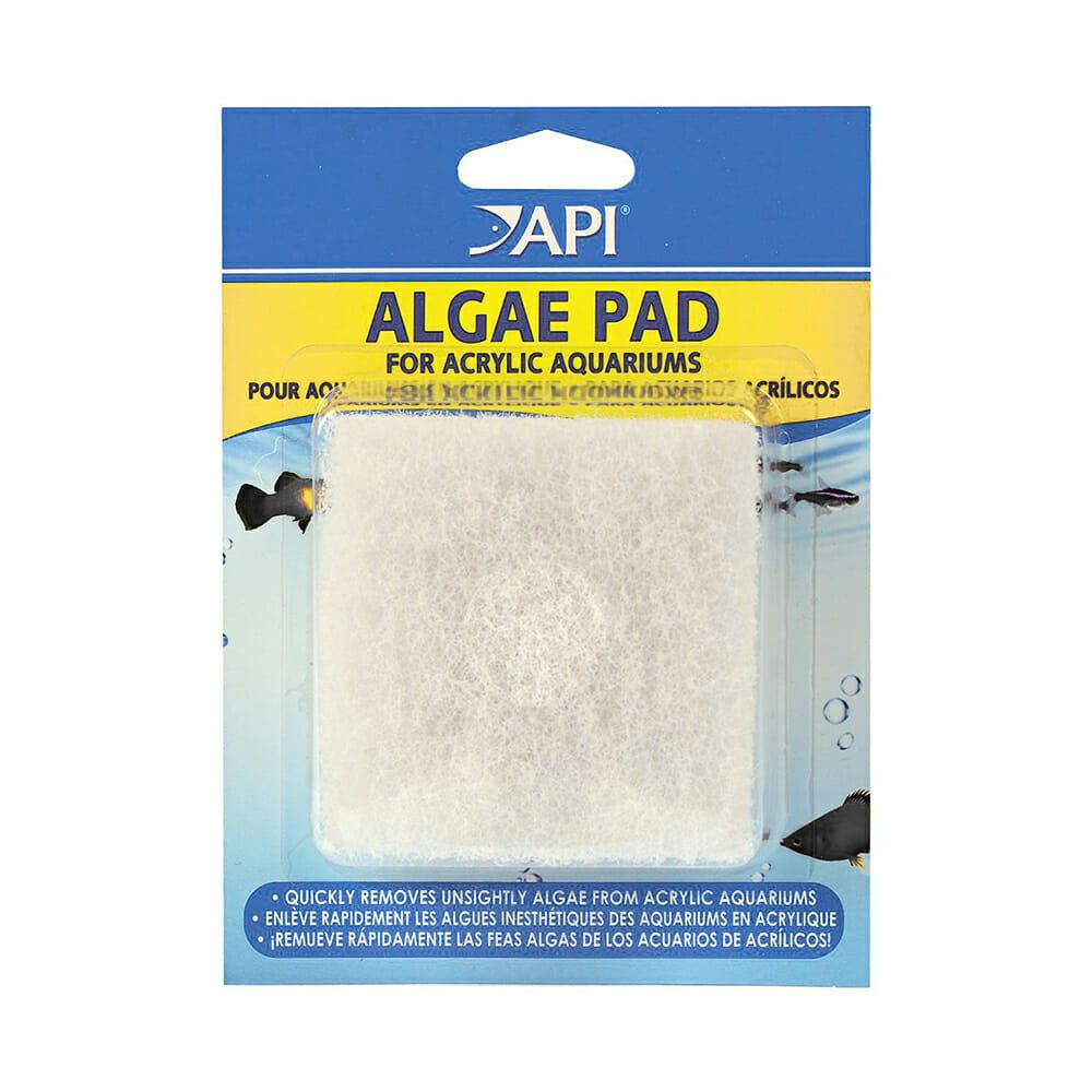 Algae cleaning pad for fish tank