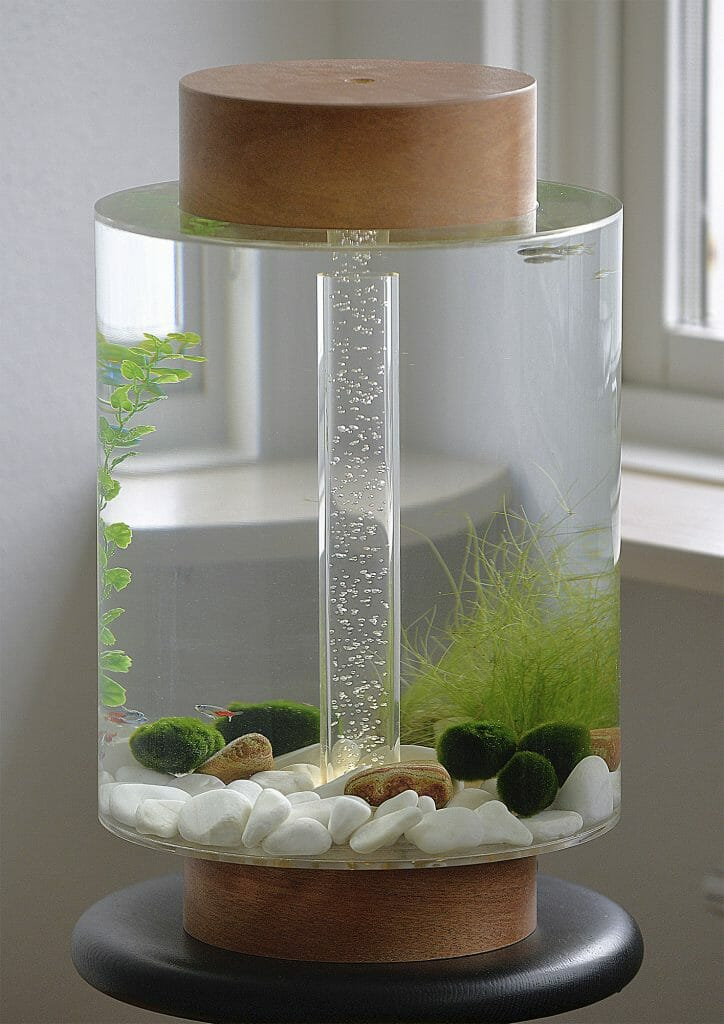 Innovative Fish Tank